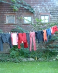 In Praise of the Clothesline